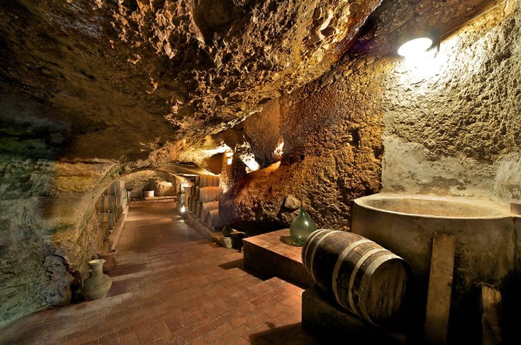 ピポリ ビアンコ ワイン貯蔵庫